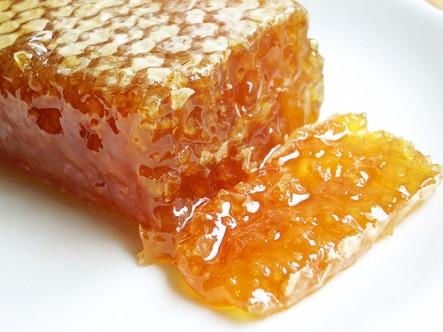 Fresh honey comb